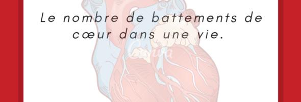 Nombre de battements du cœur au cours d'une vie